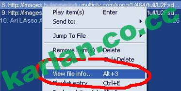 view-file-info.jpg